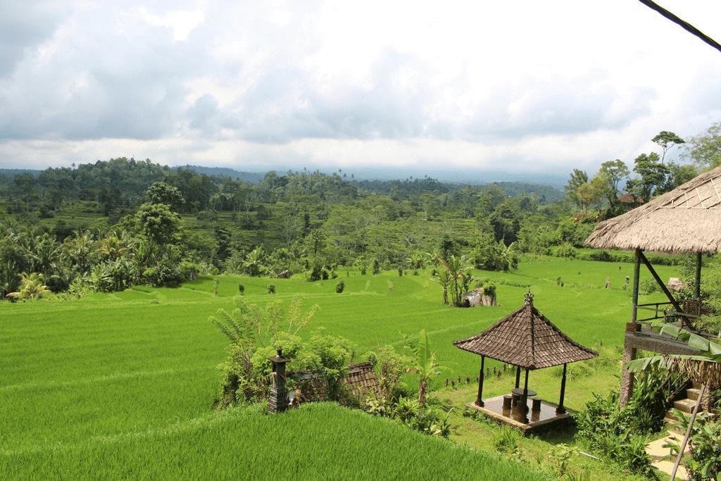 Digitális_nomád_életmód_Bali